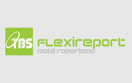 TBS FlexiReport Raporlama